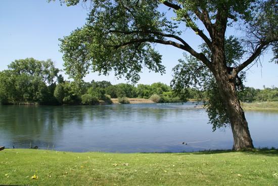 Lower Sacramento River near Anderson in Shasta County
