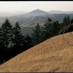 Briones Regional Park has a large number of hiking trails, including to the top of Briones Peak, where views like this await.