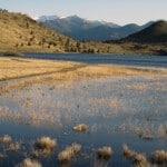 Lake Shastina. (Photo by John Soares)