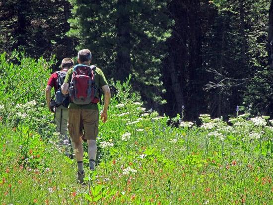 Hikers on the Manzanita Creek trail in the meadow below Lassen Peak.