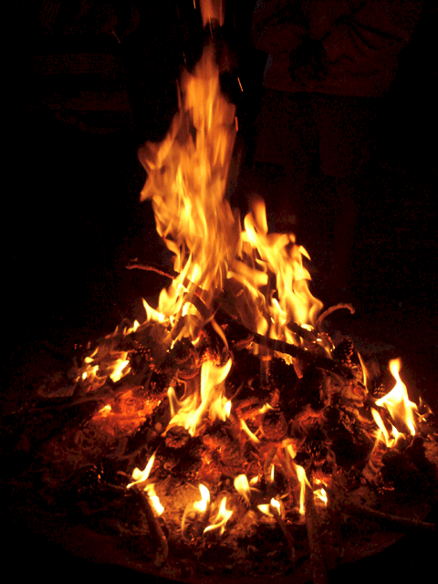 Get a California campfire permit so you comply with rules and laws. Important for hikers, backpackers, and campers! Permits are available online and at national forest, BLM, and CalFire offices.
