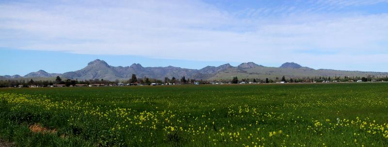 The Sutter Buttes in the Sacramento Valley. The Middle Mountain Foundation leads hikes there.