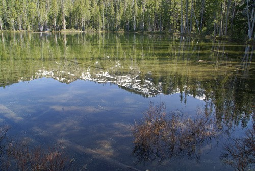 Lower Cliff Lake off South Fork Road, Trinity Divide Mountains west of Mount Shasta