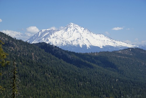 Mount Shasta viewed from the Pacific Crest Trail in the Trinity Divide Mountains.