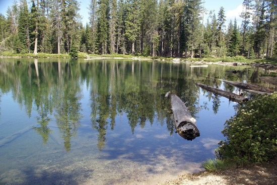 Upper Seven Lake Shoreline, Seven Lakes Basin
