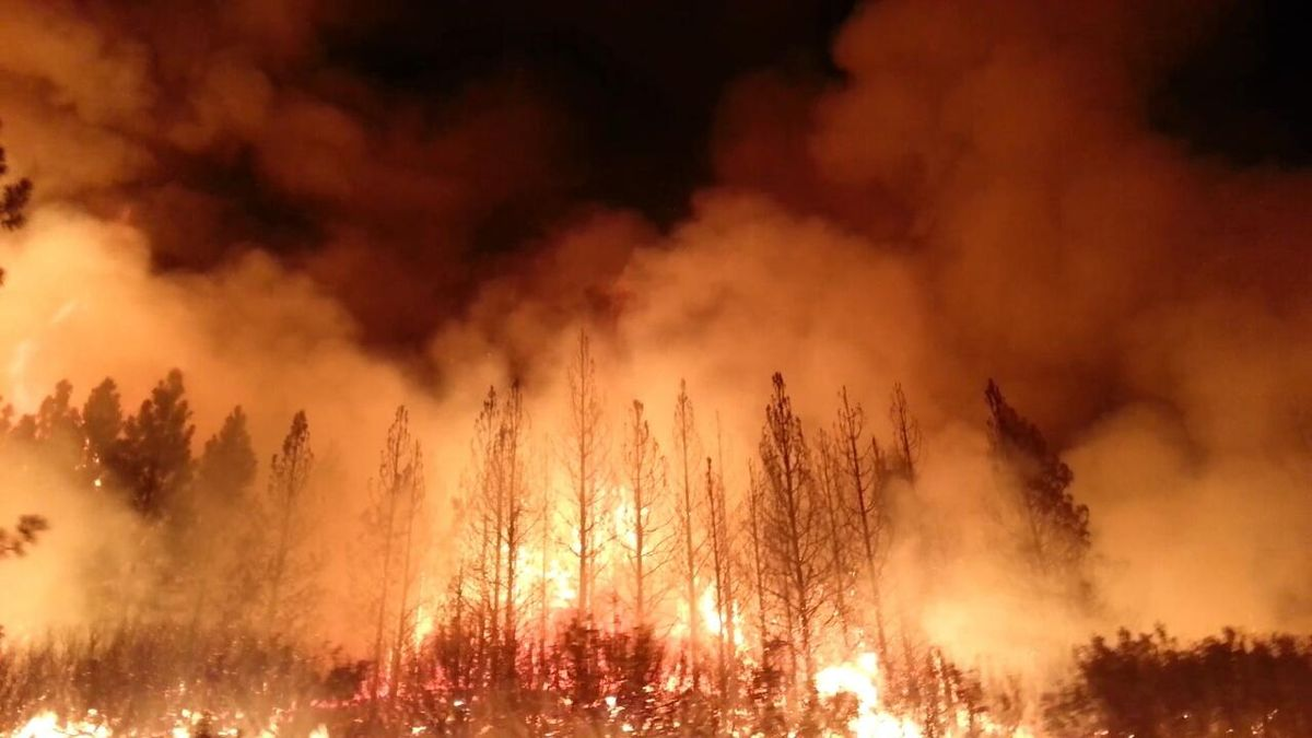 California wildfire: the 2013 Rim Fire in Yosemite National Park burned 250,000 acres and generated vast amounts of smoke. Courtesy U.S. Dept. of Agriculture