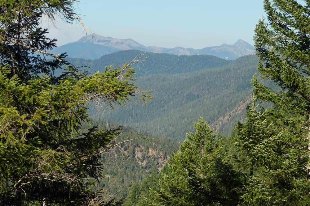 French Hill Trail: View of the Smith River Canyon and Siskiyou Wilderness. Smith River National Recreation Area in Six Rivers National Forest.