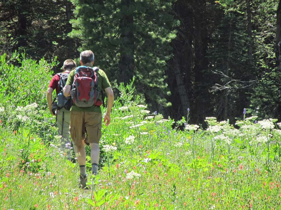 The Manzanita Creek Trail in Lassen Volcanic National Park is good for day hiking and an overnight backpacking trip.