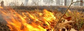 Controlled burns can reduce wildfire risks to people and property in California, Oregon, and elsewhere in the American West.
