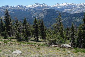 Hiking the Ellis Peak Trail Near Lake Tahoe