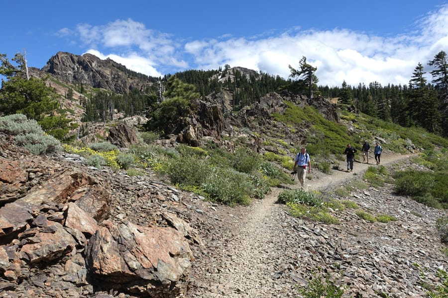 Hikers on the Sierra Buttes Trail, which is the Pacific Crest Trail here. Note wildflowers, metamorphic rocks, and Sierra Buttes in the distance.