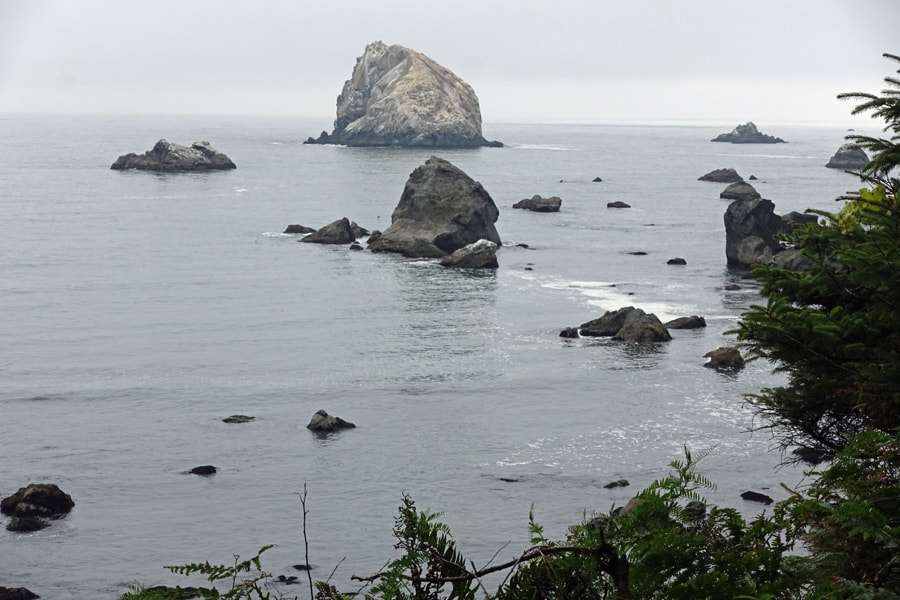 False Klamath Rock viewed from the Yurok Loop Trail/California Coastal Trail in Redwood National Park near Hidden Beach.