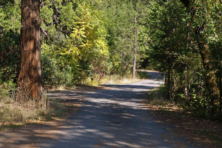 Sims Flat Campground has spacious and private campsites, some near the Sacramento River and others near Hazel Creek.
