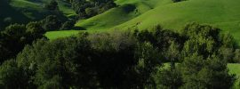 Briones Regional Park hiking trails feature vibrant green hills in spring. Briones Peak has the best view over much of the San Francisco Bay Area.