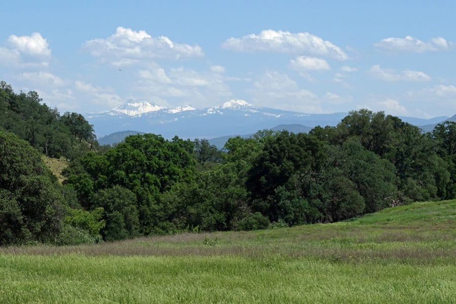The Sacramento River Bend Area north of Red Bluff is one of Northern California's best spring backpacking destinations. Views of Lassen Peak and green hills abound.