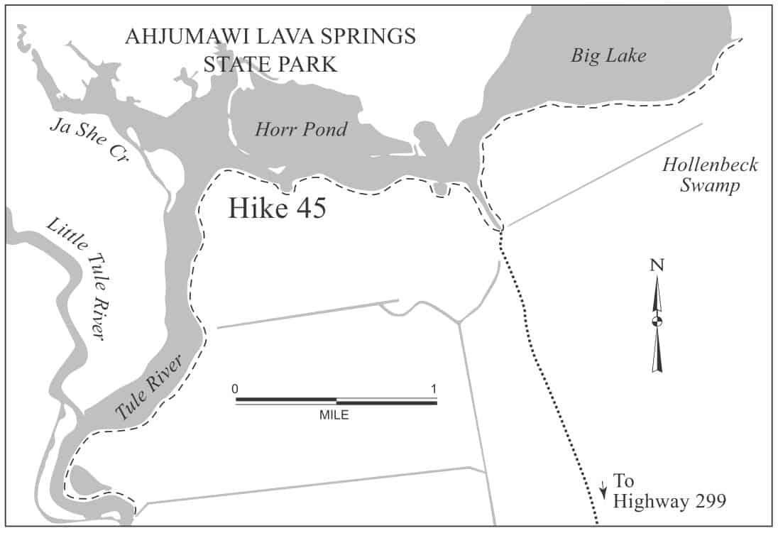 Hiking Big Lake, Horr Pond, and the Tule River Levee Trails