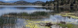 Hikers and visitors need a lands pass for California Department of Fish and Wildlife trails, like Shasta Valley Wildlife Area's Trout Lake.