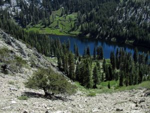 Taylor Lake in the Russian Wilderness: Hiking, Camping, Fishing!