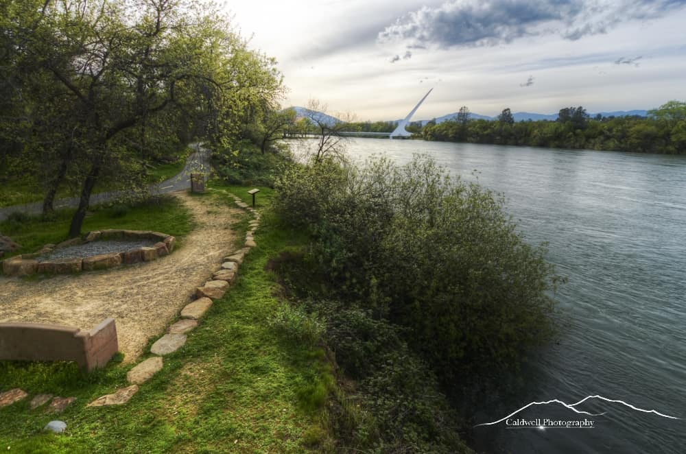 The Sacramento River Trail in Redding's Turtle Bay offers beautiful vistas of the Sundial Bridge. This portion of the trail is east of the Turtle Bay Museum.