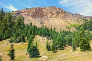 Brokeoff Mountain Trail: Better than Lassen Peak!