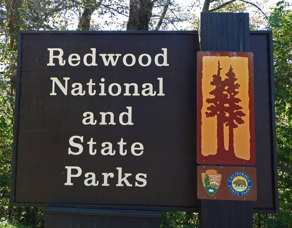 Redwood National and State Parks Facts and Statistics: key data about redwood trees and Redwood National Park, Jedediah Smith Redwoods State Park, and Prairie Creek Redwoods State Park.