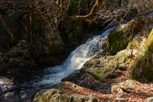 Faery Falls: Fantastic Waterfall on Ney Springs Creek Near Mount Shasta