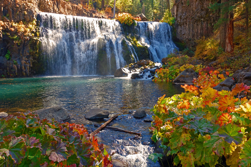 Middle Falls of the McCloud River: Autumn Color