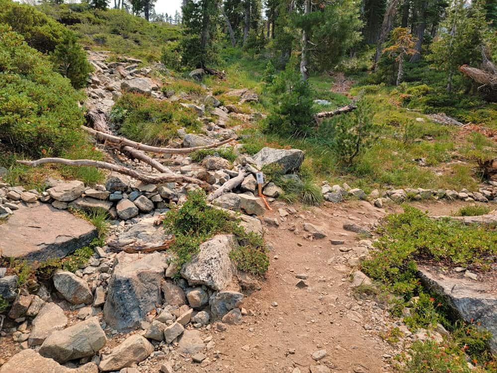 Heart Lake Trail rerouted segment. Note the eroded rocky tread of the closed-off old trail.